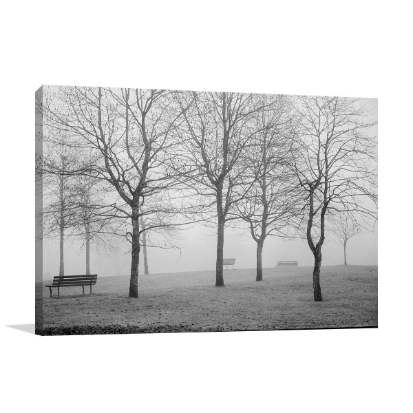 B&W Misty Park Canvas Art