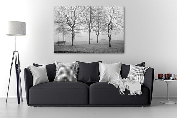 B&W Misty Park Canvas Prints