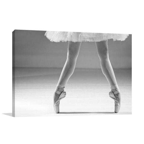 Ballet Shoes Wall Art