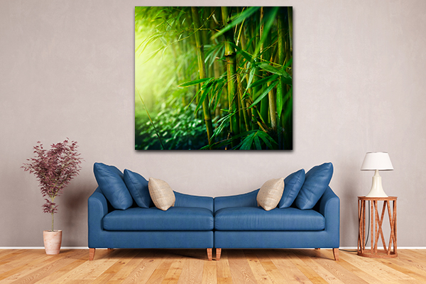 Bamboo Forest Canvas Art Prints