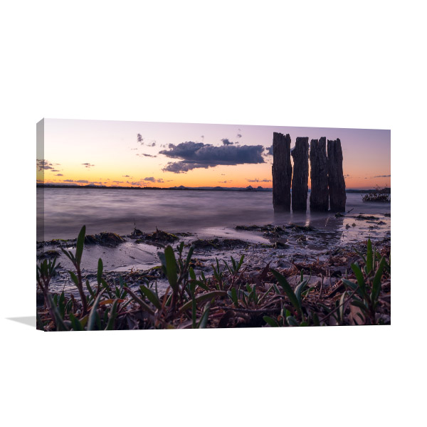 Banksia Beach Art Print Bribe Island