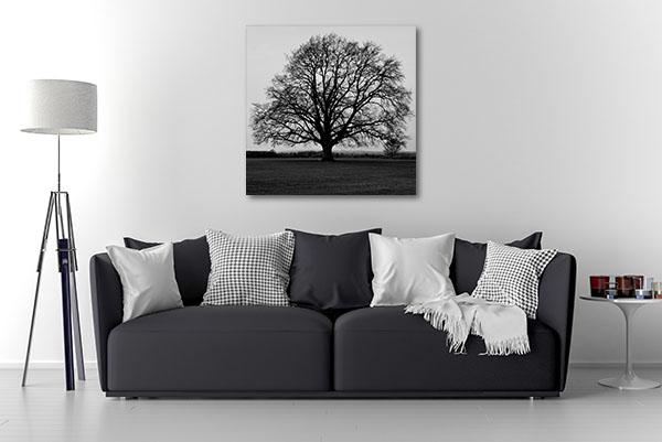 Bare Oak Tree Wall Art