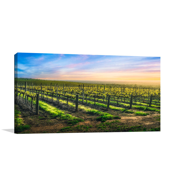 Barossa Wall Art Print Beauty Vineyard