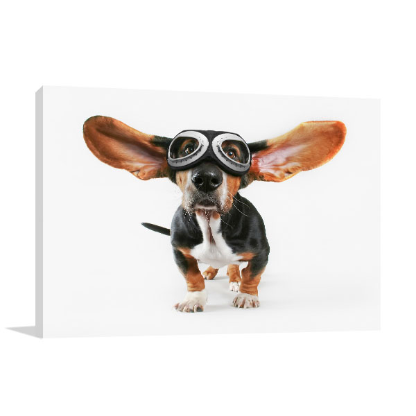 Basset Hound With Goggles Artwork