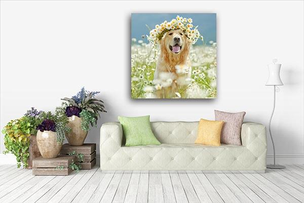 Beautiful Dog Art Print Wall Art