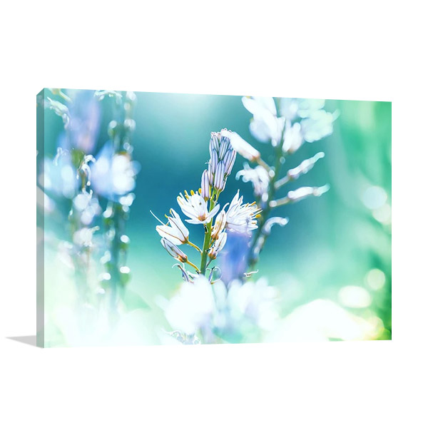 Beautiful Flower Art Print Canvas