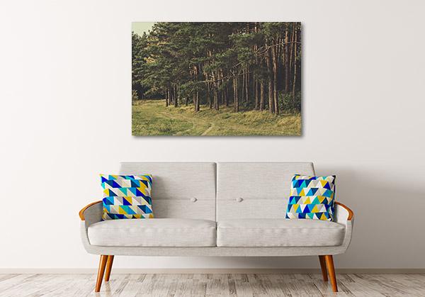Beautiful Pine Forest Wall Art