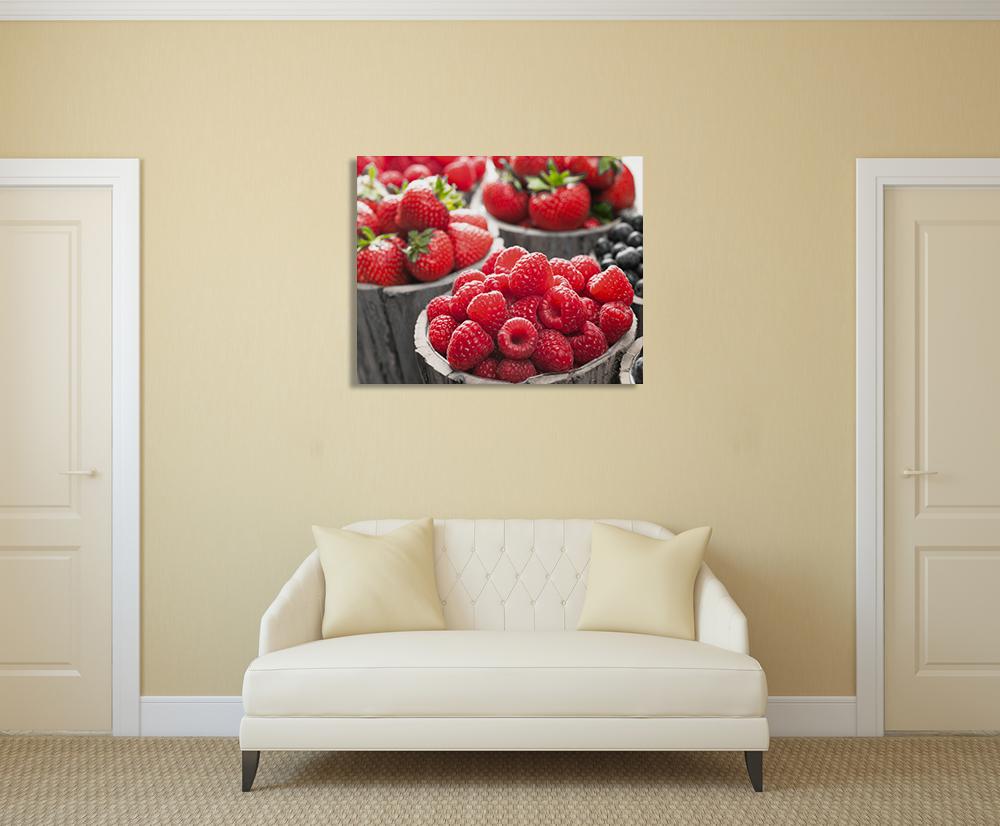 Modern Fruit Canvas Art