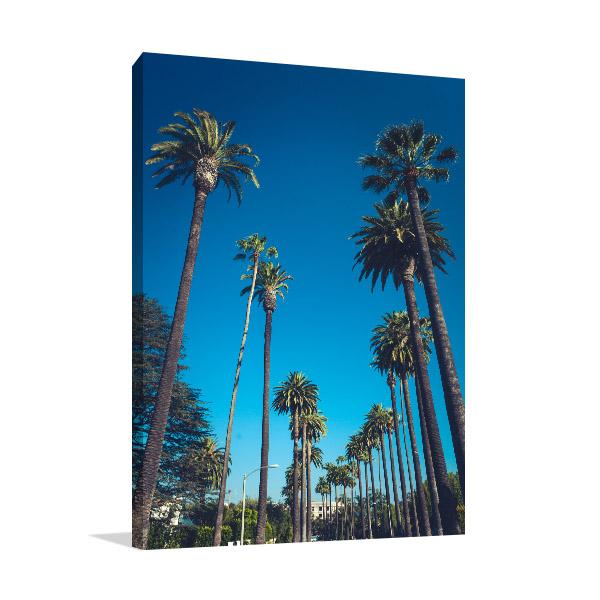 Beverly Hills Palms Print Photo Art