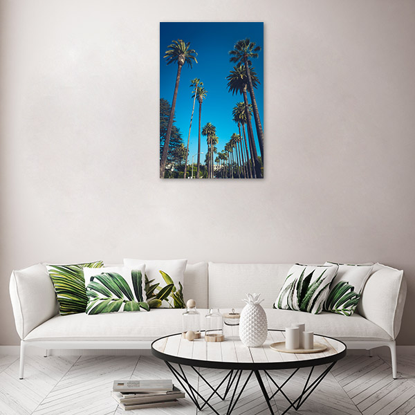 Beverly Hills Palms Canvas Prints