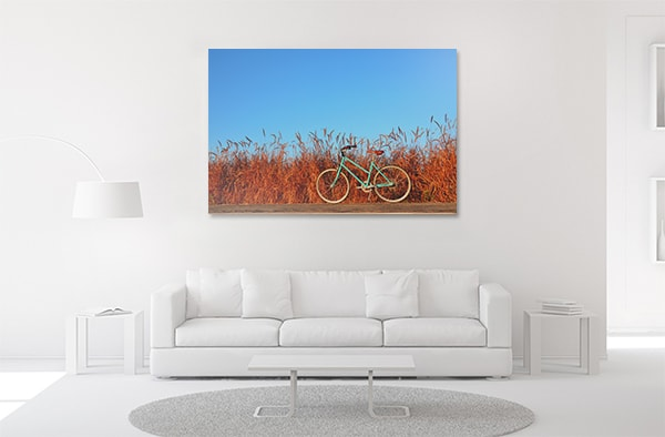 Bicycle on Road Print Artwork