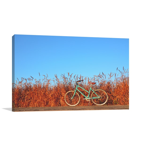 Bicycle on Road Art Prints