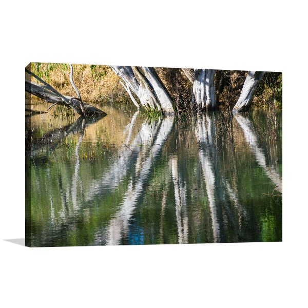 Billabong Art Print Tree Trunks Ripple Water