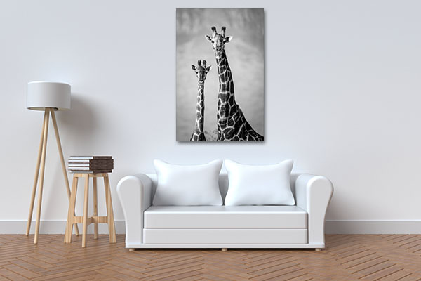 Black And White Giraffes Wall Art