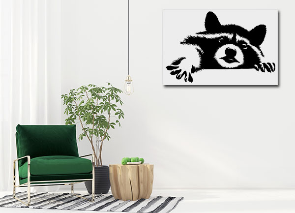 Black and White Racoon Canvas Prints