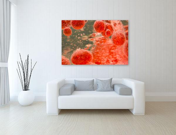 Blood Cells Wall Art Print Canvas Prints