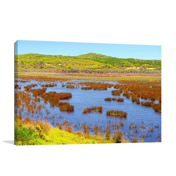 Bloom Bright Art Print Australian Landscape