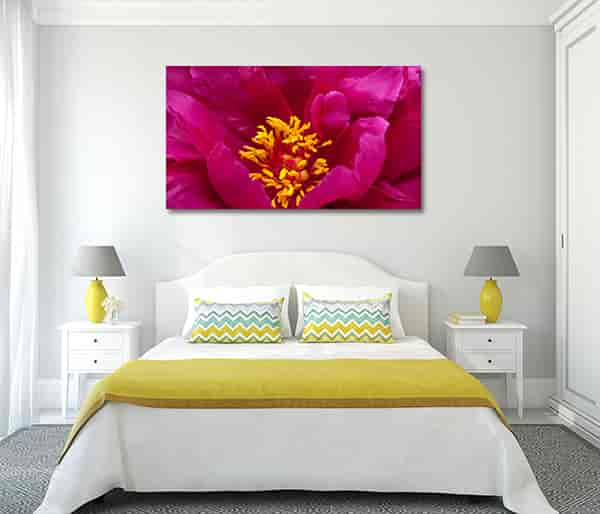 Blossom Wall Art Prints