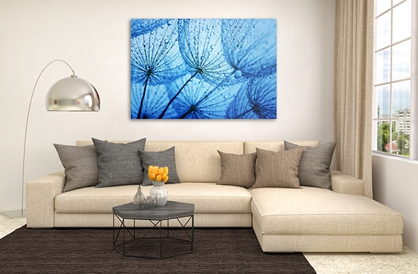 Blue Dandelion Canvas Art Print Prints Canvas