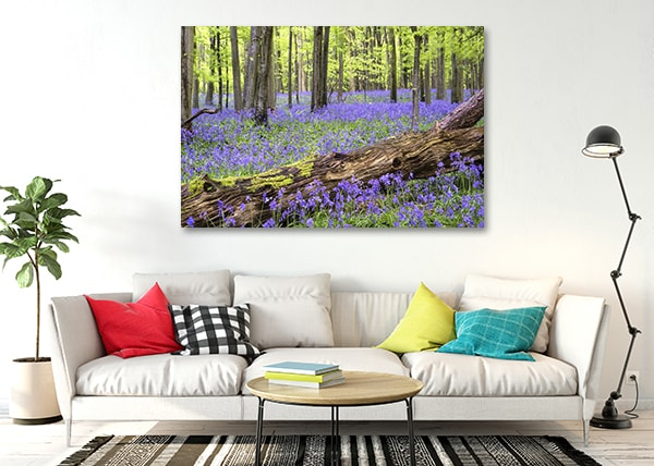 Bluebell Forest Wall Canvas