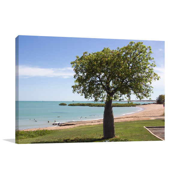 Broome Art Print Boad Tree Summer Canvas Art Prints