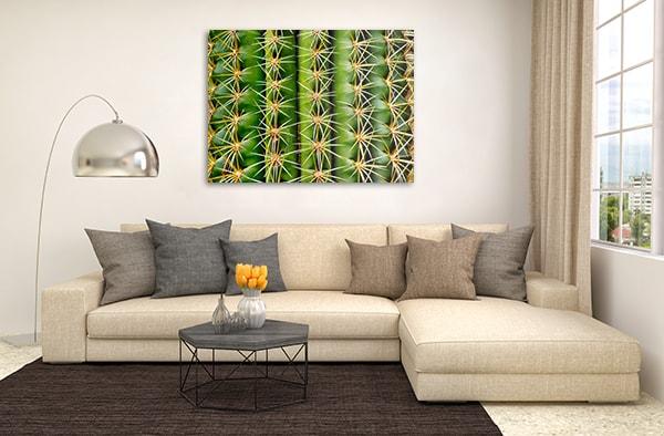 Cactus Art Print Canvas Art