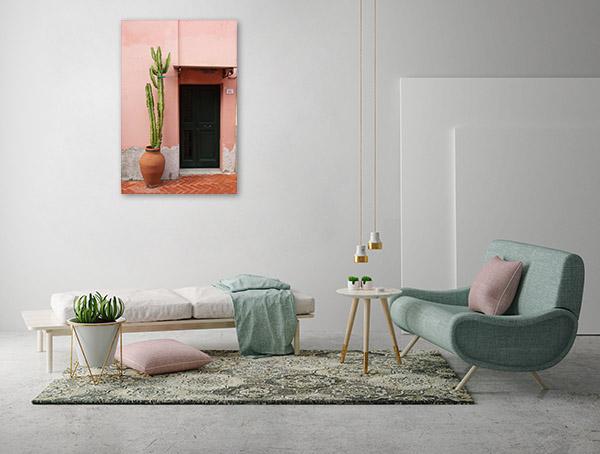 Cactus & Door Picture Print