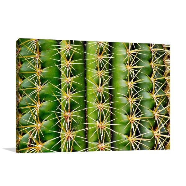 Cactus Art Print Artwork