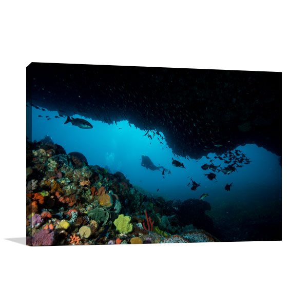 Canning Vale Art Print Under the Sea