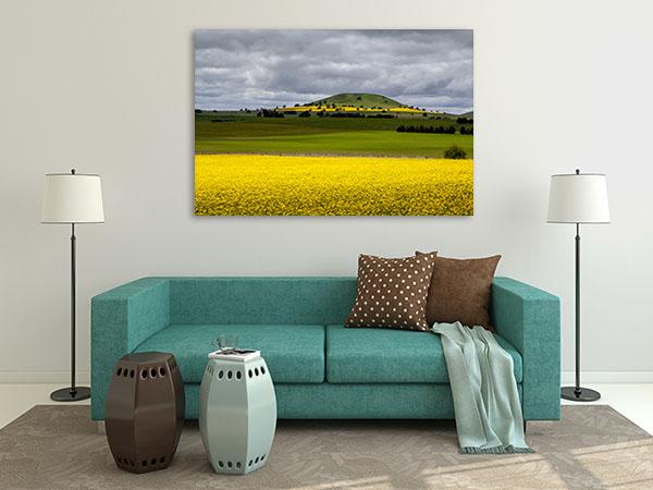 Canola Field Ballarat Prints Canvas