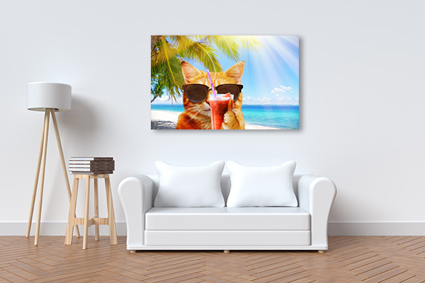 Cat on the Beach Canvas Prints