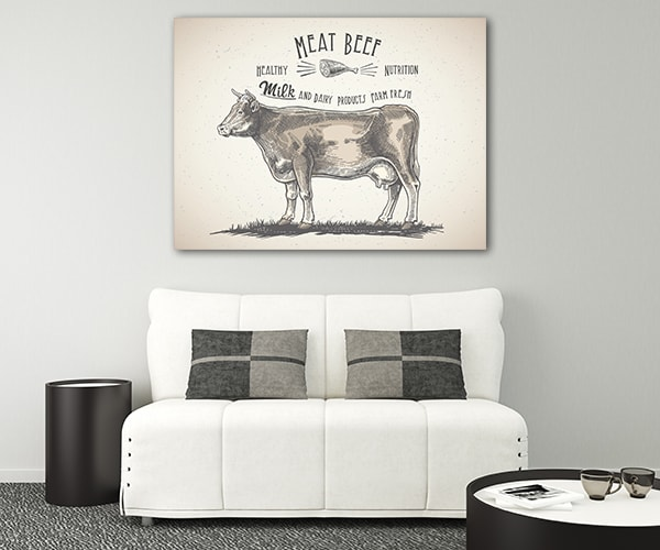 Cattle Canvas Prints