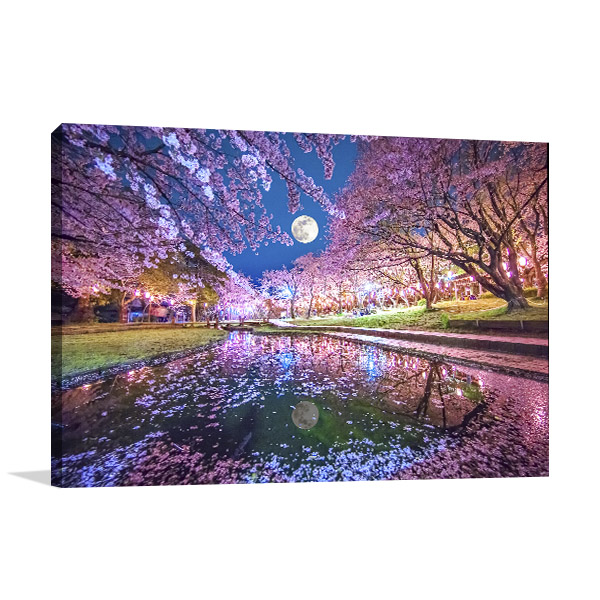 Cherry Blossoms And Moon Canvas Art