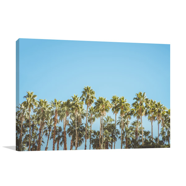 Colony Palm Trees Artwork Canvas