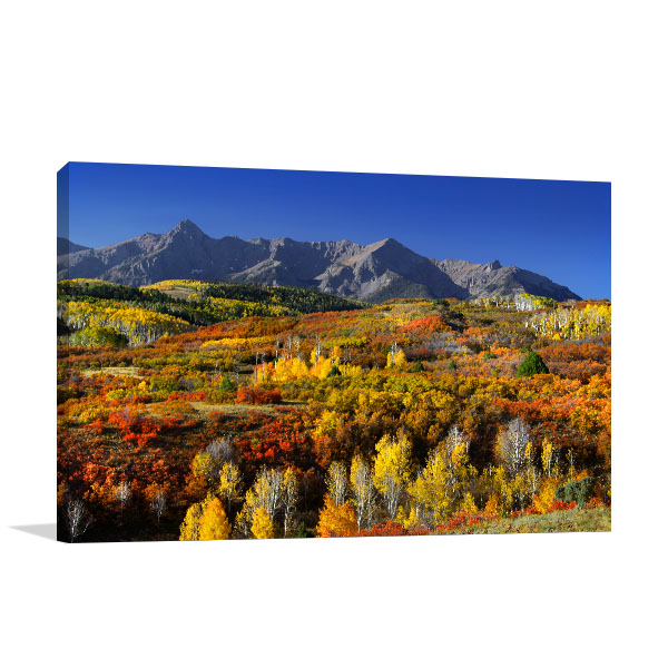 Colorado Fall Season Wall Art