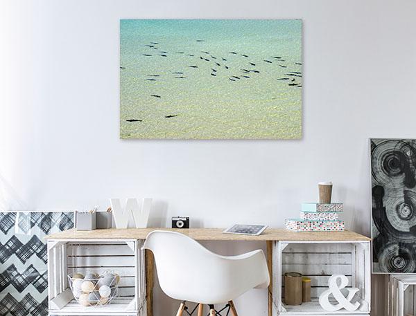Coral Bay Art Print Reef Sharks Beach Photo Wall Arts