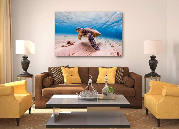 Cruising Sea Turtle Wall Art Print Canvas Art Prints