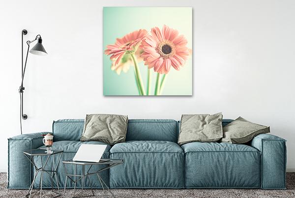 Daisy Art Canvas Print on the wall