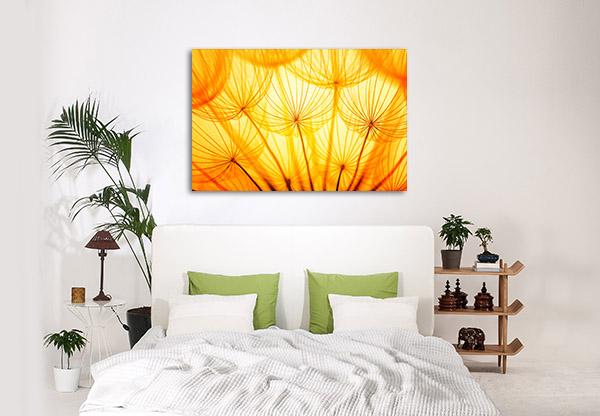Dandelion In Golden Sunlight Canvas Art Prints