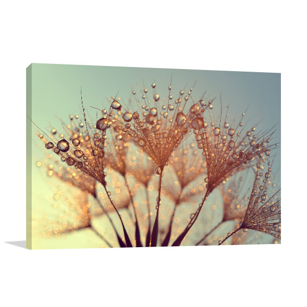 Dandelions At Sunrise Wall Art