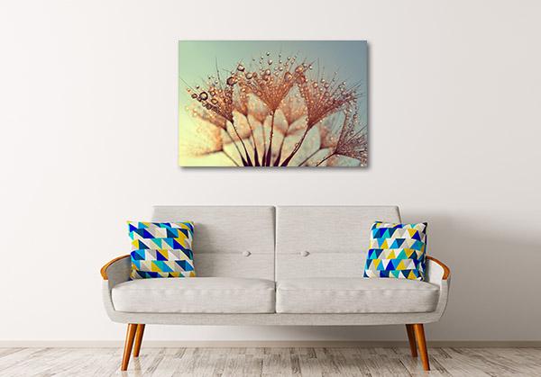 Dandelions At Sunrise Prints Canvas