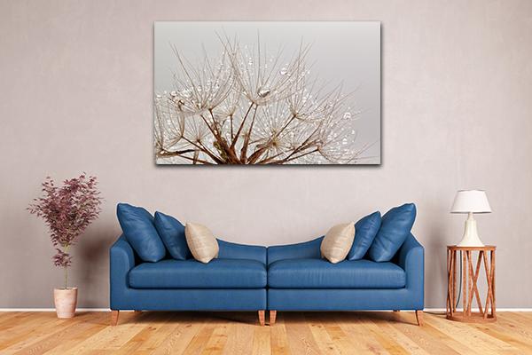 Dandelions Drops Print Artwork
