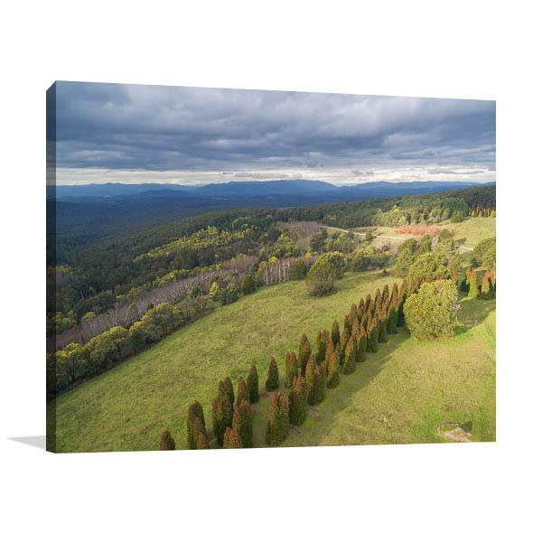 Dandenong Ranges Wall Art Photo Print
