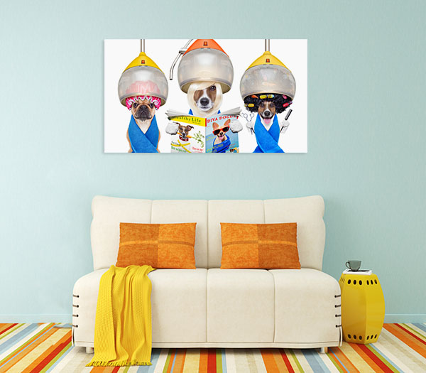 Dogs At Hairdresser Canvas Prints