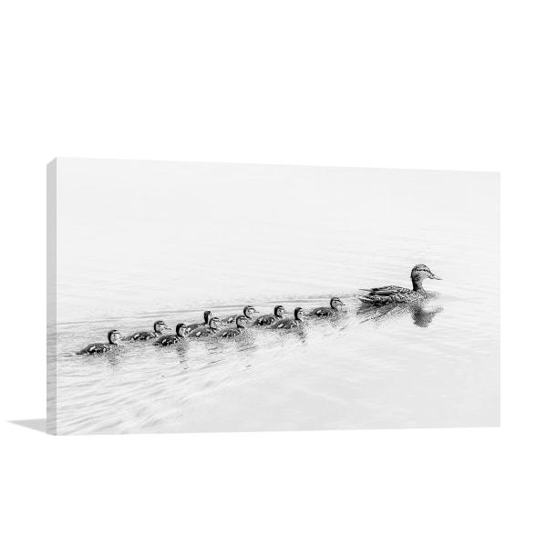 Ducks Follow Me Print Artwork