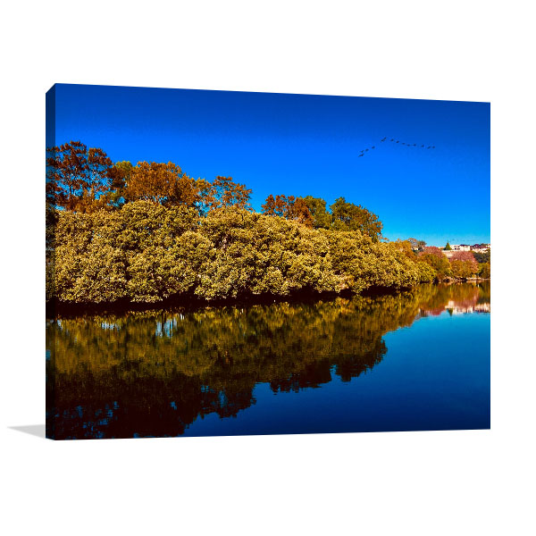 Earlwood Art Print Cooks River