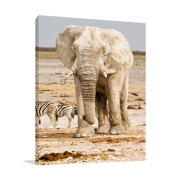 Elephant in Africa Wall Print