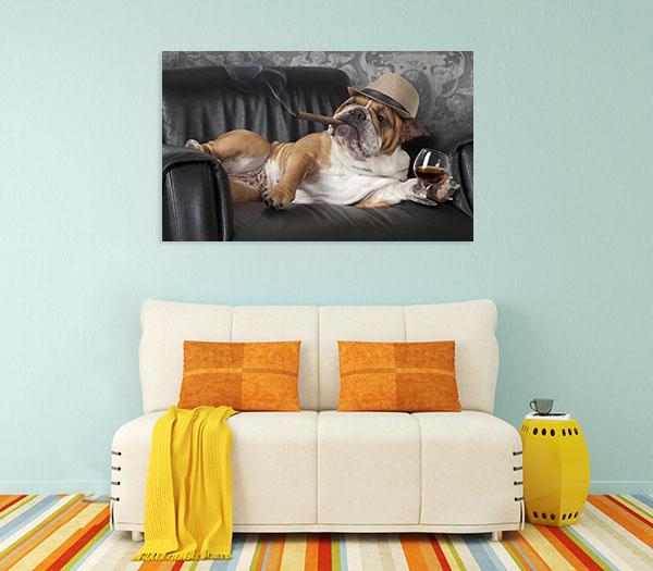 English Bulldog Print Artwork