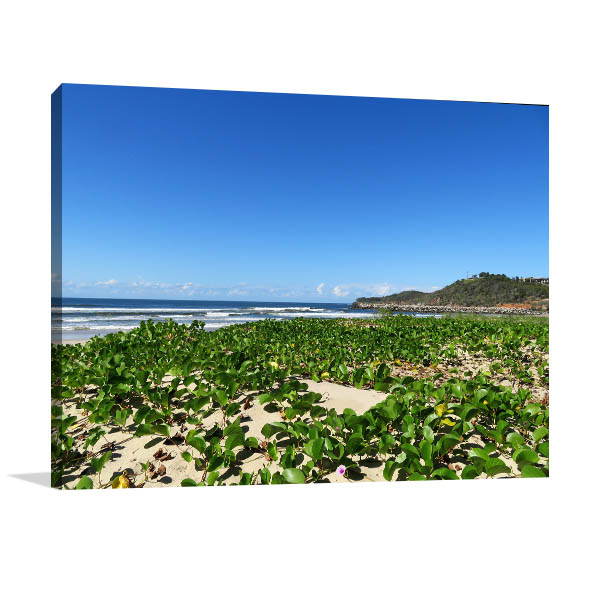 Evans Head Canvas Print NSW Beach Artwork Photo
