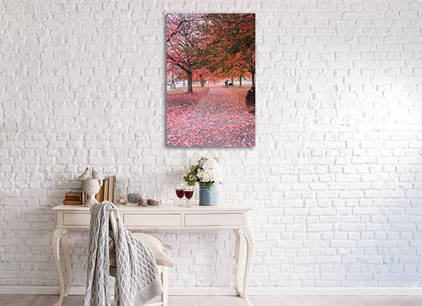 Fall in Vancouver Canvas Prints
